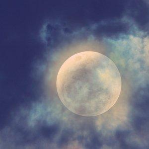 iron horse full moon tw 21616