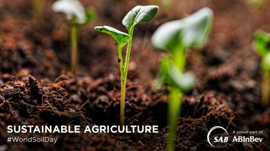 sab sustainable agriculture