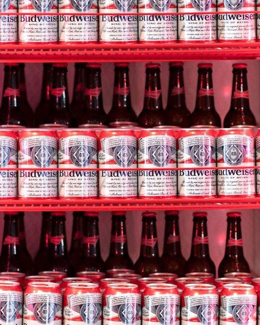 budweiser fridge full